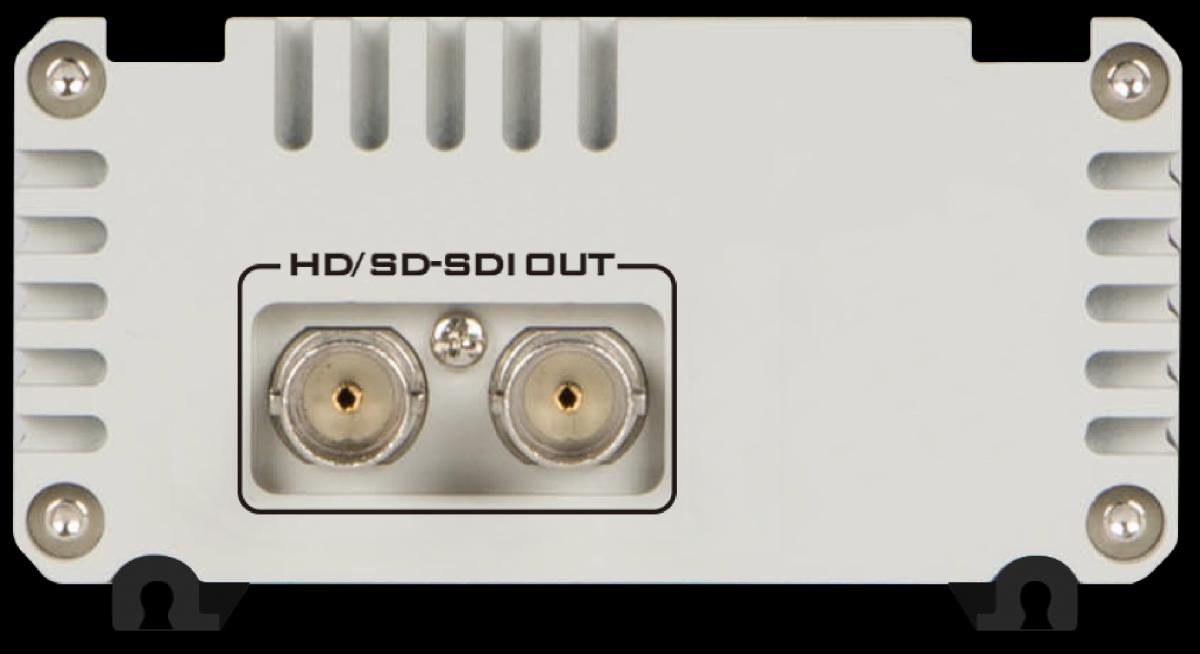 Audio embedded within SDI output signal