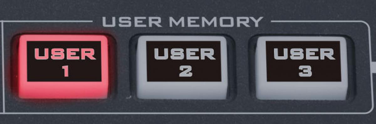 User memories